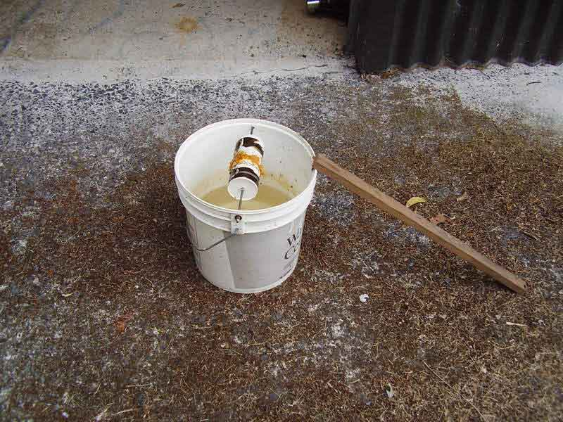 how to make a 5 gallon bucket rat trap
