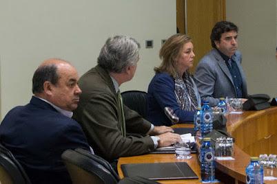 eL PP apoia elaborar plan actuación eliminación puntos negros na Rede estradas do Estado