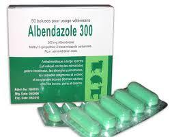 Dosis Obat ALBENDAZOLE (Albendazole)