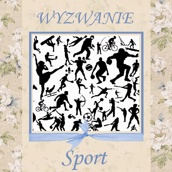 http://szuflada-szuflada.blogspot.ie/2014/08/wyzwanie-sierpniowe-sport.html