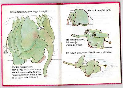 Amit egy elefántról feltétlenül tudni kell