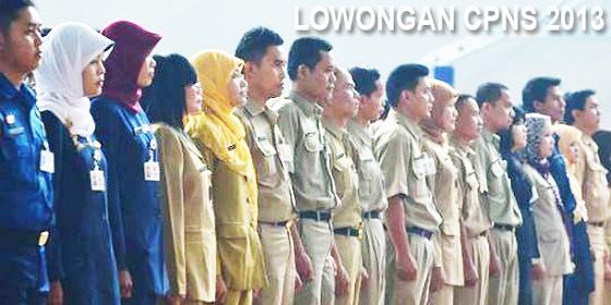 Penerimaan CPNS 2013: 60.000 Lowongan, Ini Jabatan Yang Diproritaskan