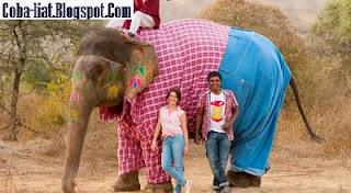Ada Gajah Pakai Celana Jeans