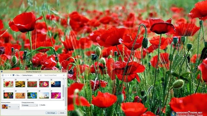 الوورود الجميل لويندوز