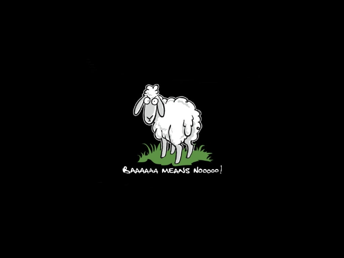 it 39 s hd animals funny wallpapers funny wallpaper pictures
