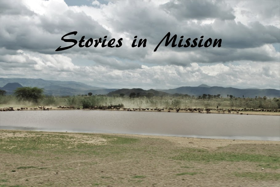 Stories in Mission