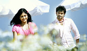 Nenu Naa Premakatha Movie Photos Gallery-thumbnail-7