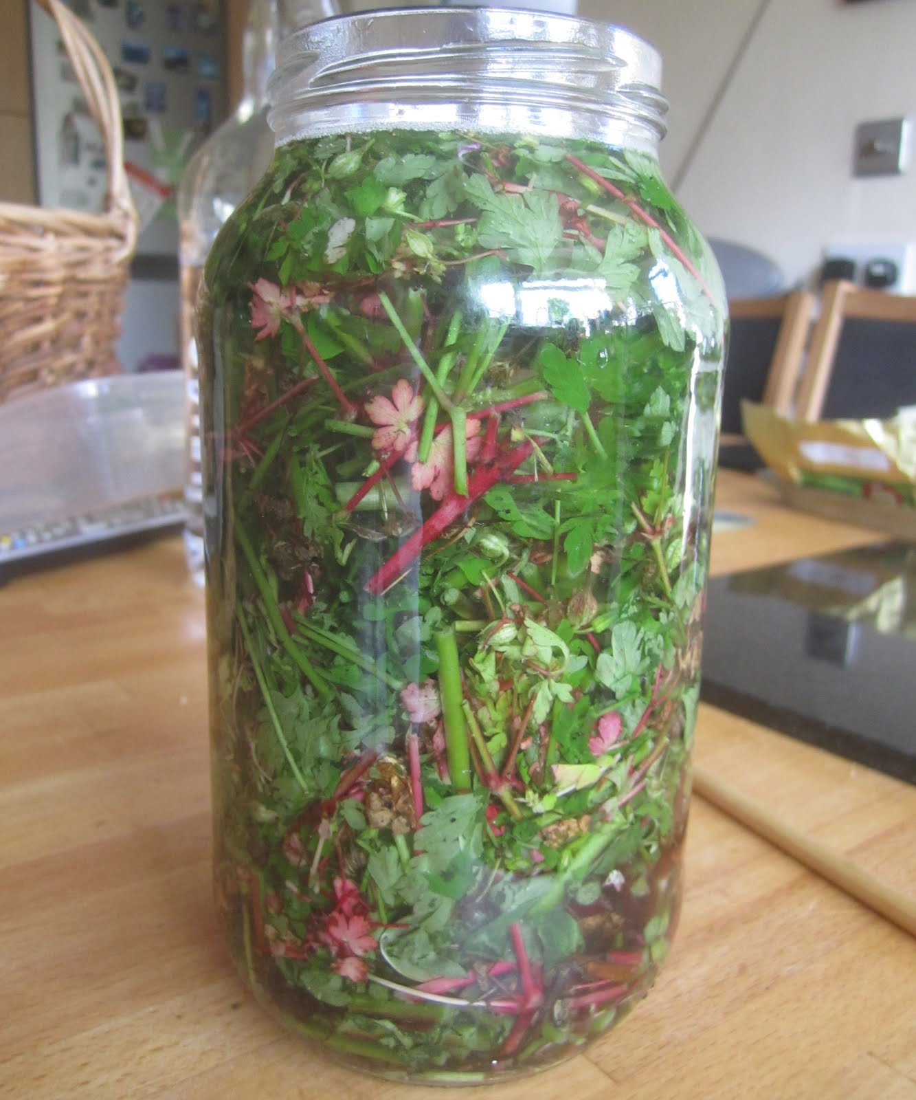 Herb Robert tincture