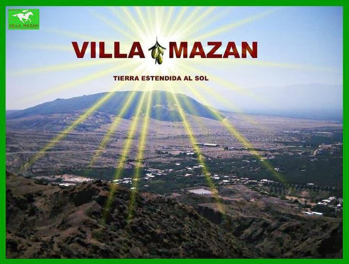 STUD LOS OLIVOS-VILLA MAZAN-LA RIOJA