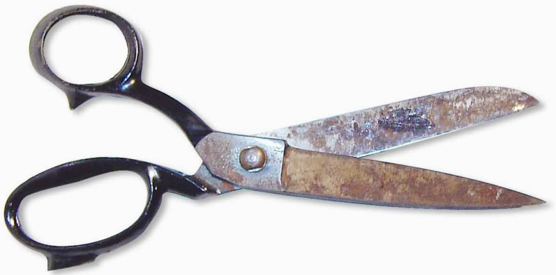 A pair of rusty old scissors