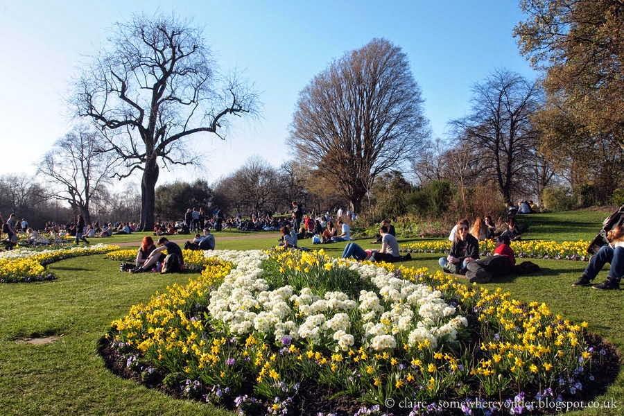 Hyde Park Rose Garden
