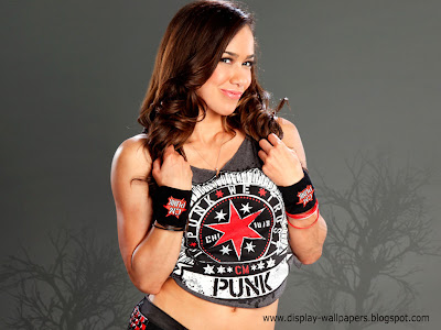 AJ Lee Latest Wallpapers 2014