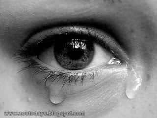 Manfaat menangis - [www.zootodays.blogspot.com]