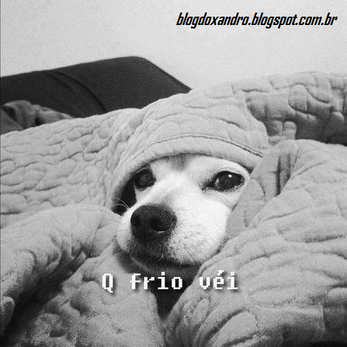 frio.png (500×500)