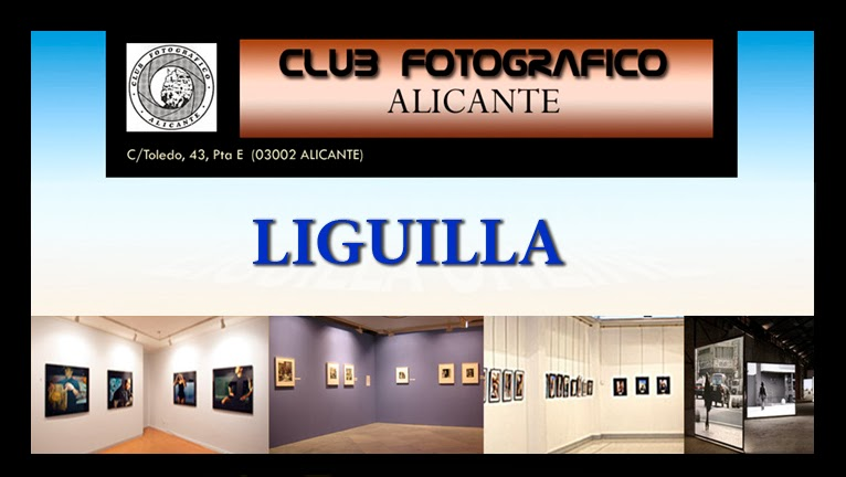 clubfotograficoalicante_liguilla