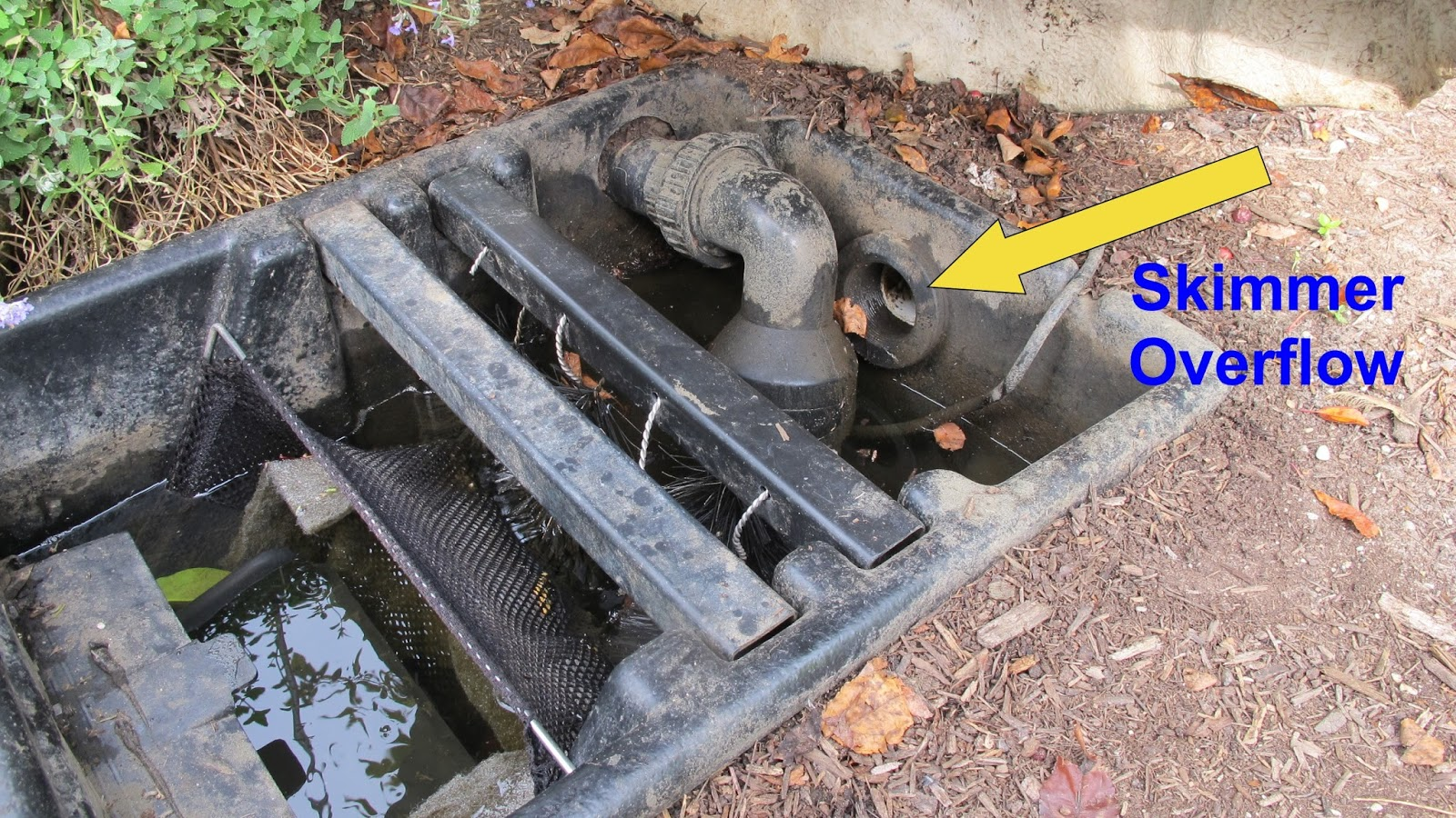 How to properly check the water level in your pond for Pond skimmer
