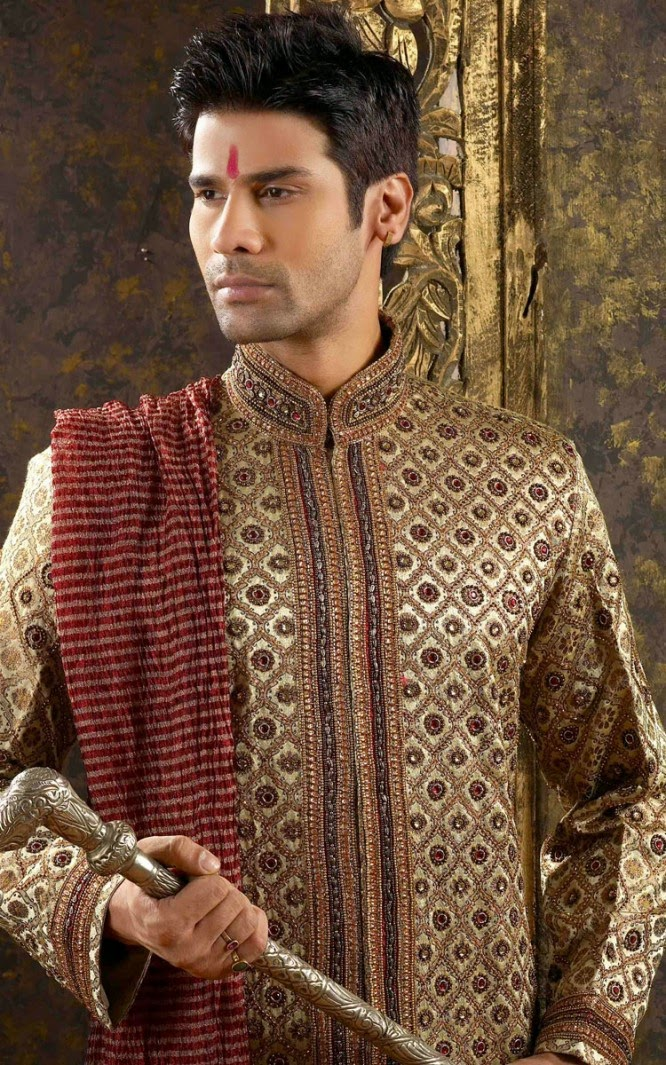 Indian Traditional Dresses: Punjabi Wedding Clothing