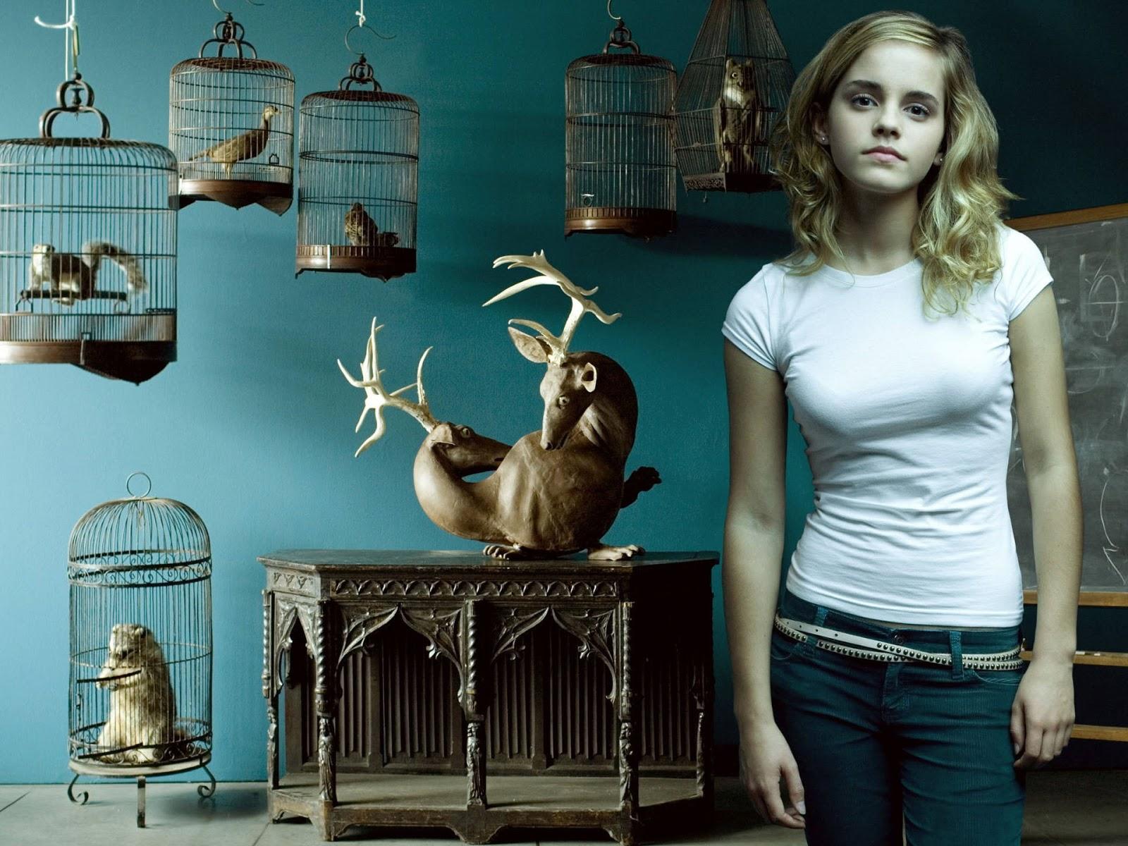 http://2.bp.blogspot.com/-lTfPrYW8Xpg/UKDCnEHuKHI/AAAAAAAAAQ8/z7CPxHWM4LY/s1600/Emma-Watson-Widescreen-Wallpaper.jpg