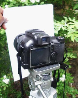 Customize White Balance DSLR Camera 1.jpg
