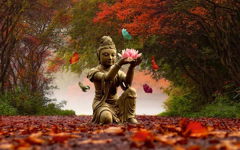 buda-budismo-loto-siria-grandet-zen-fengshui