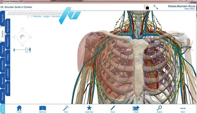 AIO Visible Body Anatomía del cuerpo humano 3D 2014