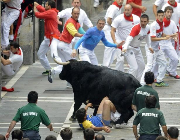 San Fermin bull runs