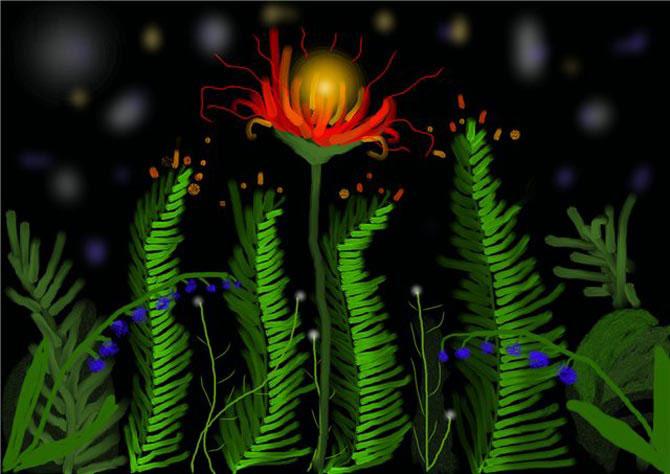 Сценарий в цветет папоротник