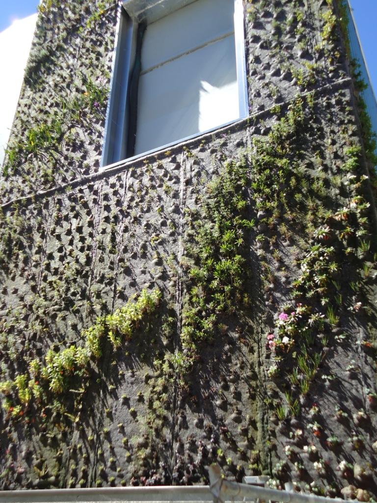 Nine hours of separation: Un giardino verticale a San Francisco