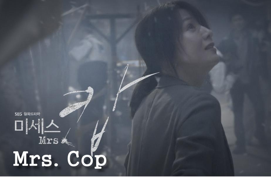 《2015韓劇 Mrs. Cop》劇情&人物介紹~金喜愛、金旻鍾