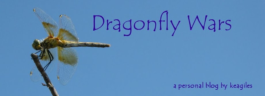 Dragonfly Wars