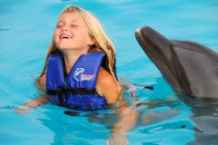 Alex Swims With the Dolphins