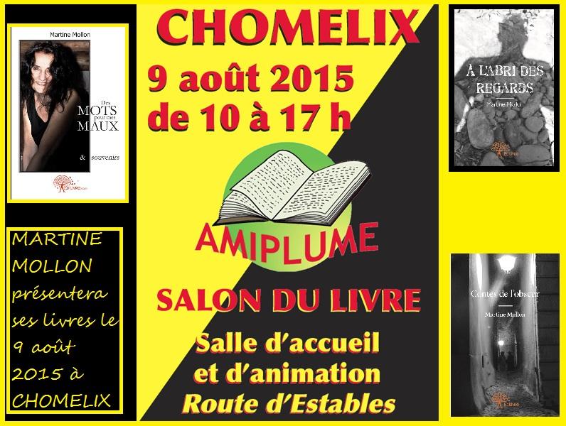 AMIPLUME SALON DU LIVRE 2015