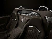 Bugatti Veyron Grand Sport 2009