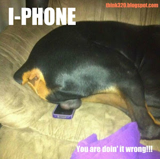 I Phone Hund eier doing it wrong