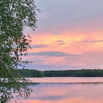 Kuukauden kuva