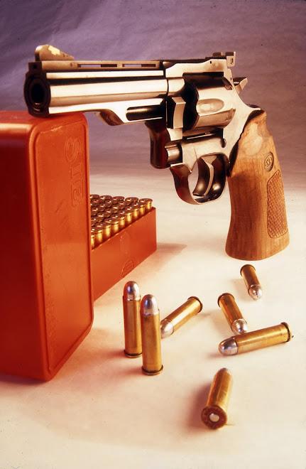357 Magnum Dan Wesson