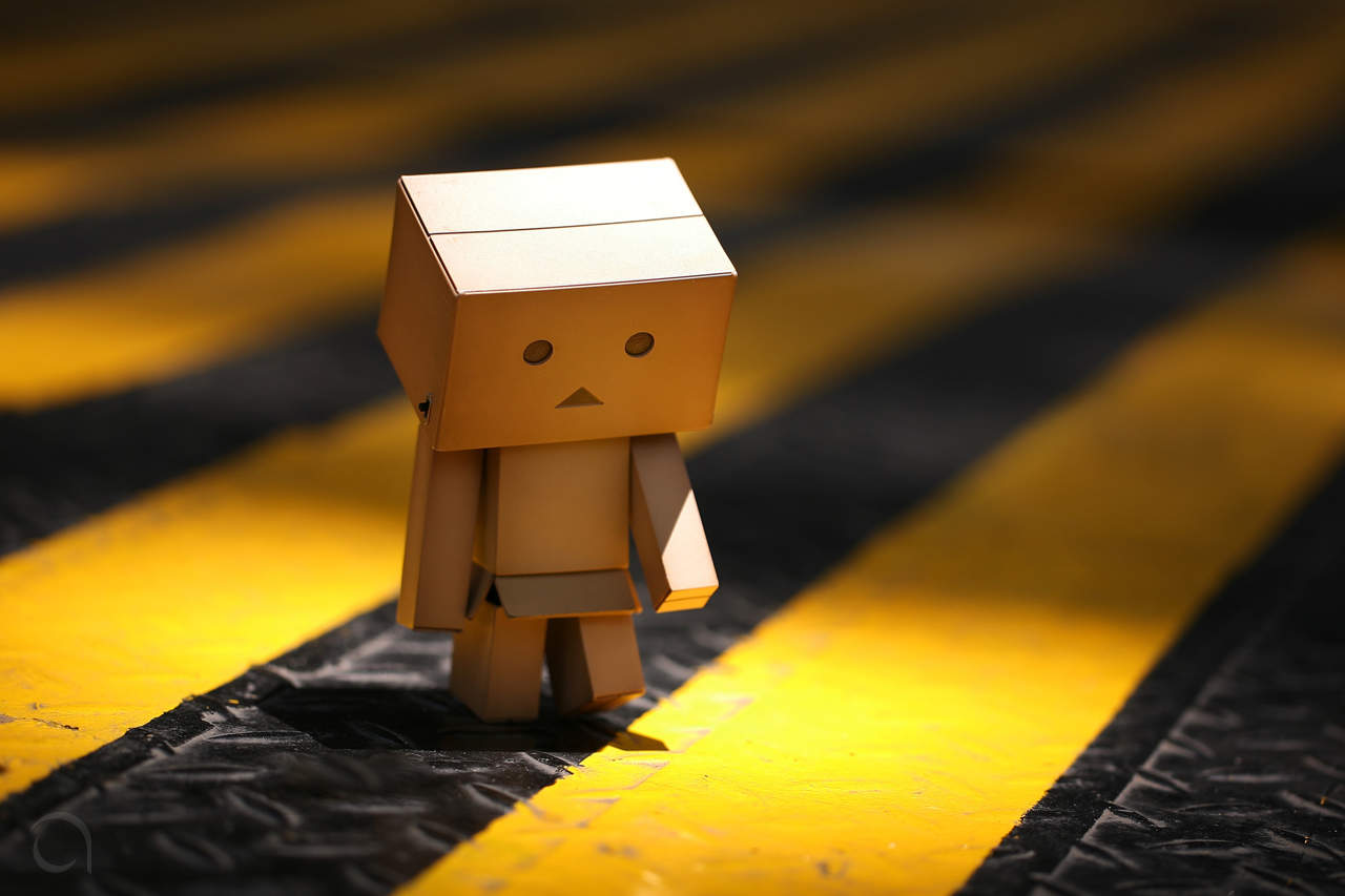 alone danbo on the street