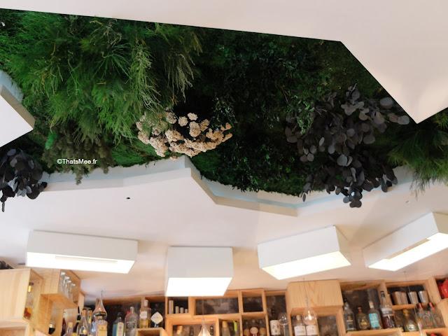 jardin suspendu  restaurant bar La Faille montorgueil paris