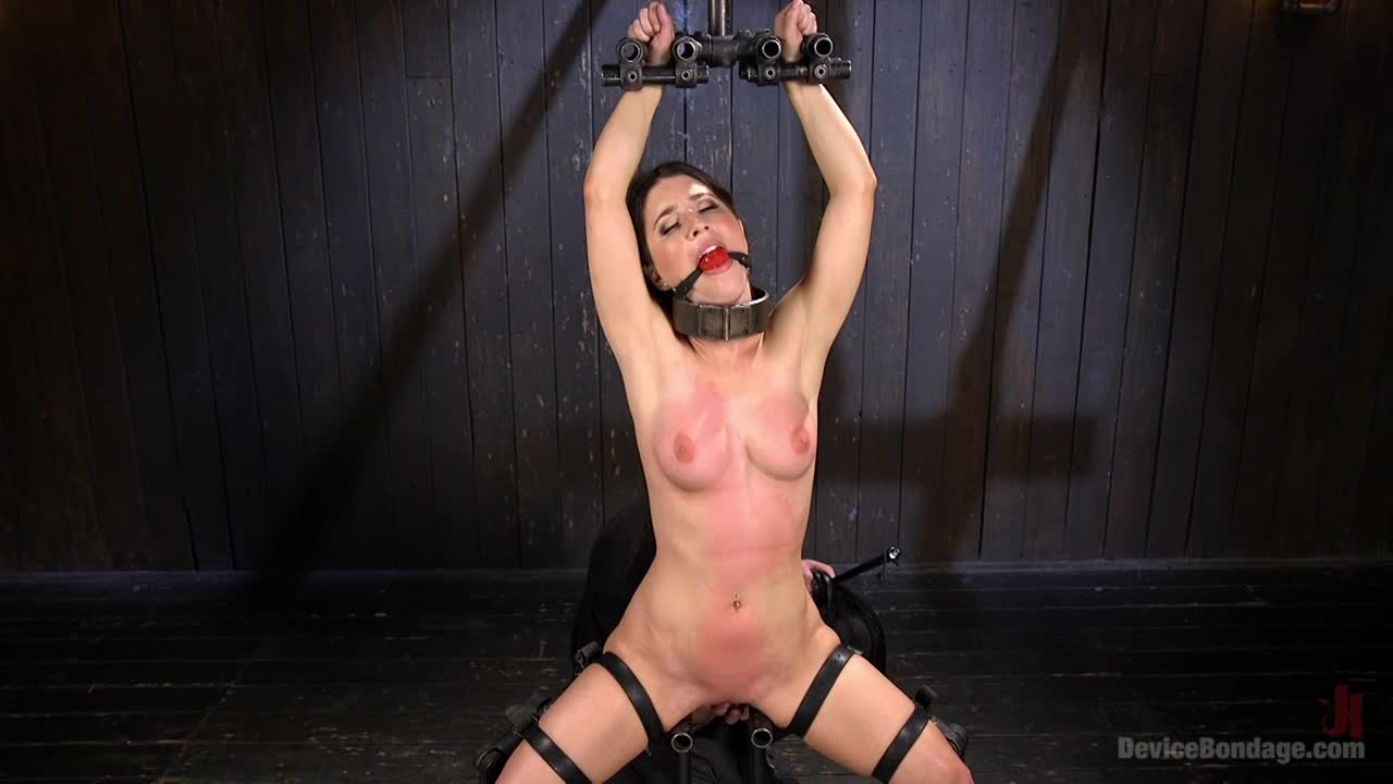 Ts dominatrix tumblr