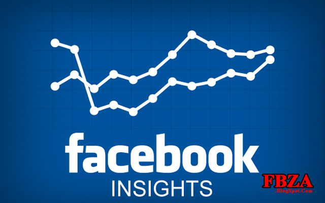 Facebook Insights You Need to Know