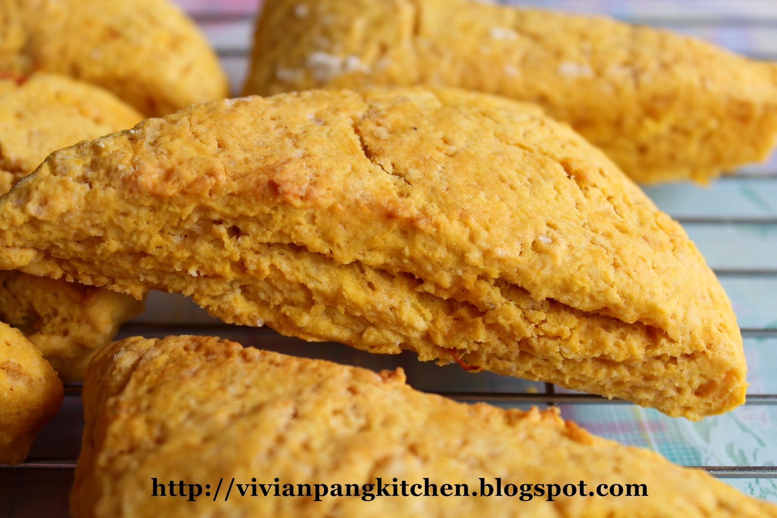 Vivian Pang Kitchen: Starbucks Pumpkin Scones