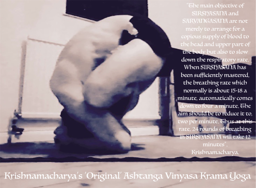 Krishnamacharya's Original Ashtanga Vinyasa Krama Yoga....... at Home