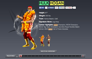 WWE Dropped Hulk Hogan, Hulk Hogan, N word, nigger