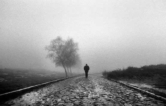 [ON] Guerra Declarada Poeta-homem-caminhando-arvore