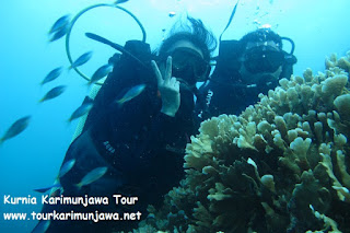 karimun jawa trip diving