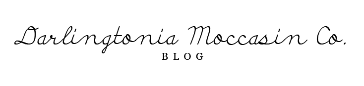 Darlingtonia Moccasin Company Blog
