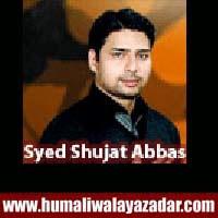 http://ishqehaider.blogspot.com/2013/11/syed-shujat-abbas-nohay-2014.html