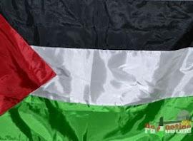 Palestine Store
