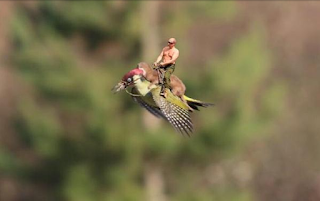 shirtless Putin on weasel on woodpecker