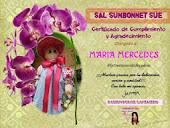 un lindo certificado